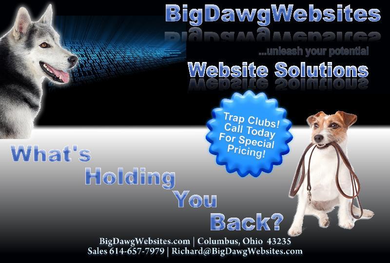 BigDawg Websites,